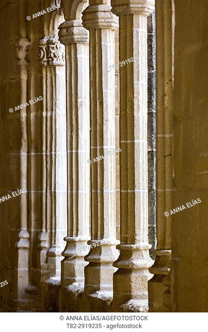 Gothic columns, The Cloisters of Santo Domingo, Jerez de la Frontera, Cadiz, Andalucia, Contact Us, Euuropa