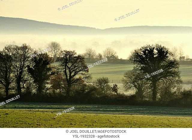 Landscape of the countryside of the northern Mayenne, with fog, fields separated by hurdles, hedged farmland of the north Mayenne