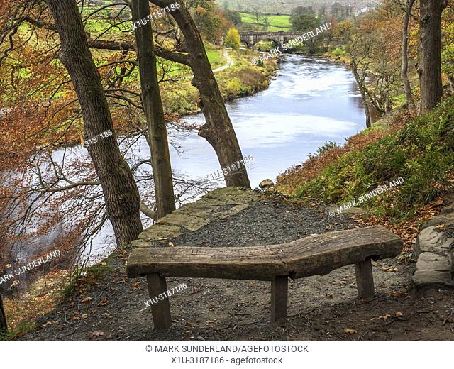 Bench at a viewpoint overlooking the River Wharfe and aqueduct footbridge in Strid Wood Bolton Abbey Yorkshire Dales England