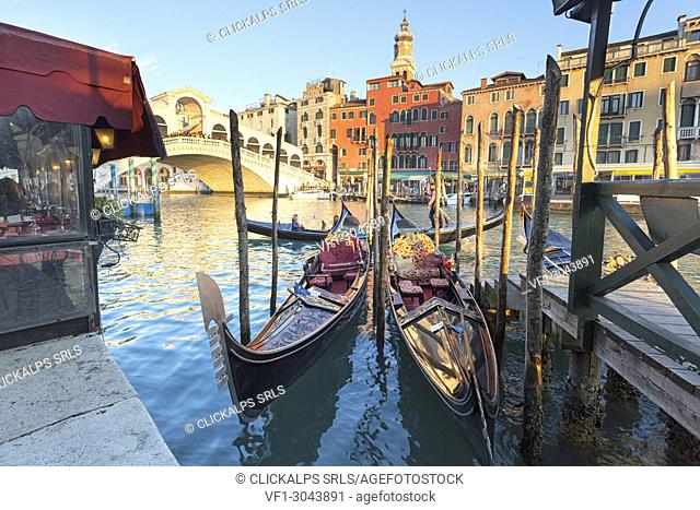 Two traditional venetian gondolas in front of Rialto Bridge, Canal Grande, Venice, Veneto, Italy