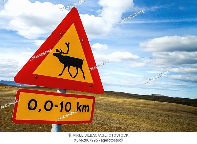 Reindeer sign. Iceland, Europe