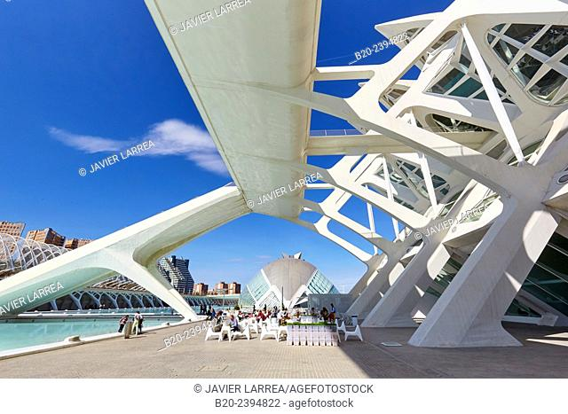 Science Museum. CAC. Architect Santiago Calatrava, Ciudad de las Artes y de las Ciencias. City Of Arts and Sciences. Valencia. Comunidad Valenciana