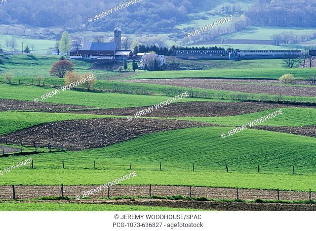 Amish Farmhouse and Farmland