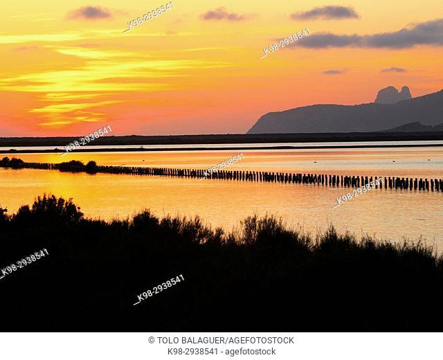 Ses Salines. Eivissa. Ibiza. Islas Pitiusas. Baleares. España