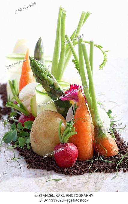 An arrangement of various different vegetables in soil