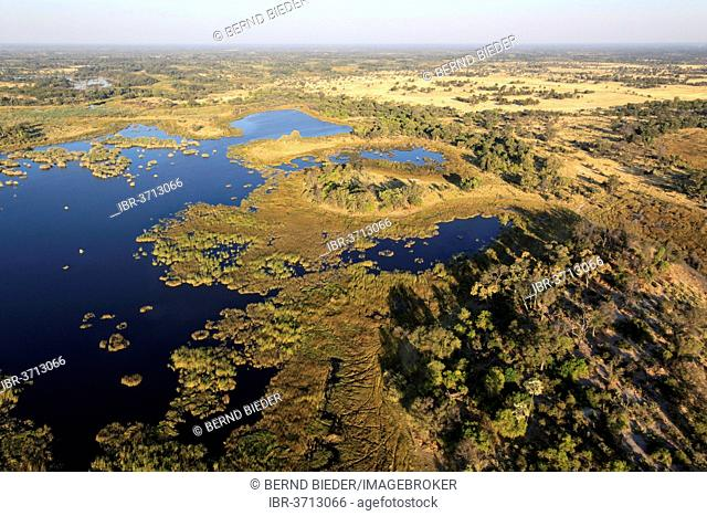 Aerial view, river landscape, Okavango Delta, North-West District, Botswana
