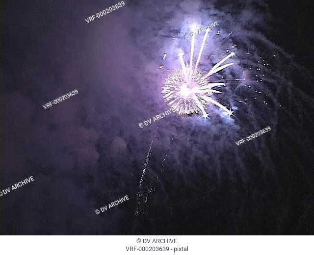 Fireworks light up the night sky