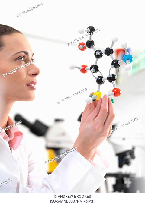 Scientist examining molecular model