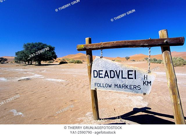 Namibia, Namib-Naukluft National park, Sossusvlei, Deadvlei trail