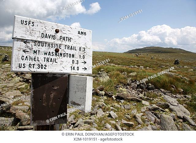 Mount Washington - Trail junction along Davis Path in the White Mountains, New Hampshire USA