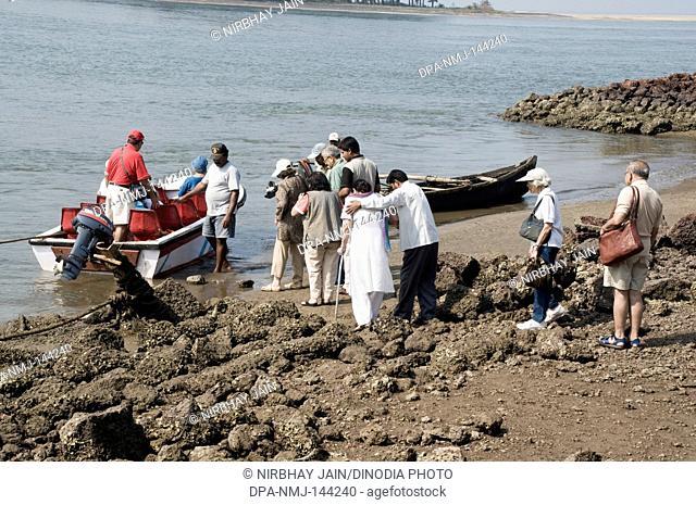 Tourists getting into a boat at Devbaug beach ; Sindhudurgh ; Maharashtra ; India