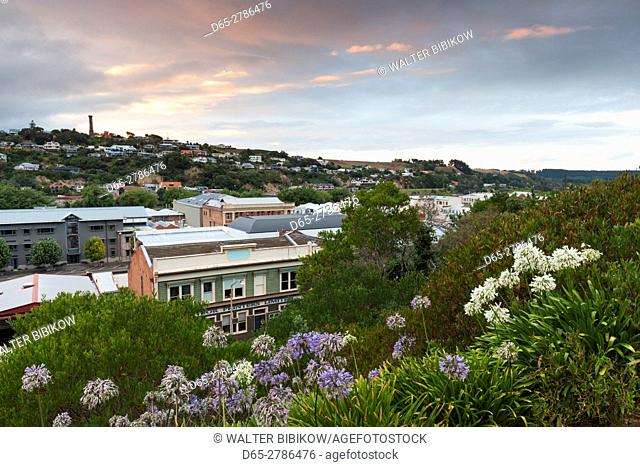 New Zealand, North Island, Wanganui, elevated city skyline, dawn