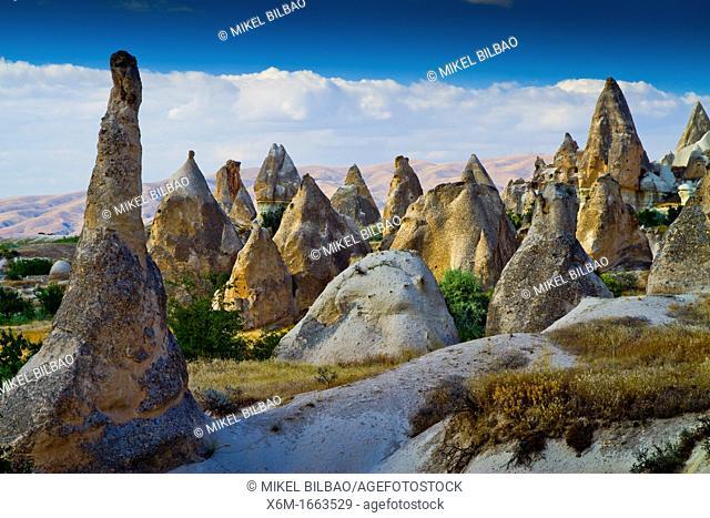 Fairy chimneys  Cappadocia Region  Nevsehir province  Turkey