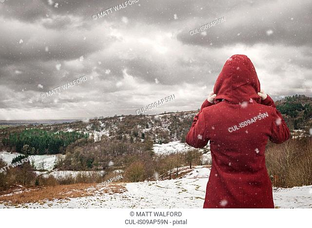 Backview of woman looking at landscape, Clent Hills, Worcestershire, UK