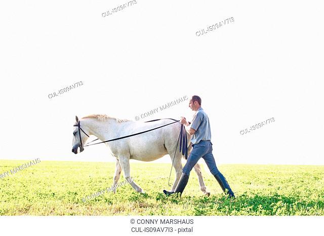 Man training white horse in field