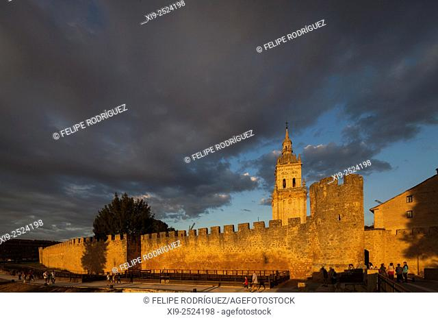 View of the city walls and the Cathedral at sunset from the West. El Burgo de Osma, Soria, Spain