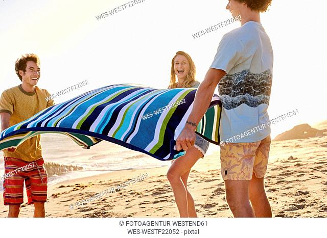 Happy friends spreading out towel on the beach