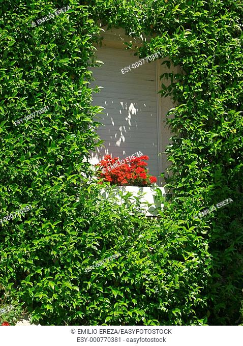 Detail of a window Mollerussa Lleida Spain