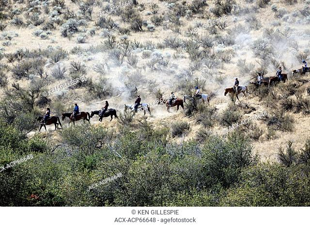 Horseback riding on a trail ride, Osoyoos, British Columbia, Canada