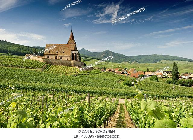 St Jacques Church with panoramic view and vineyards, Hunawihr, Alsace, France