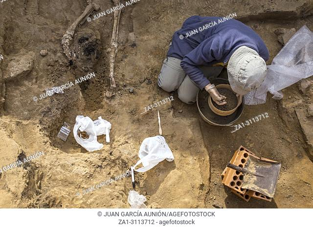 Anthropologist woman sieving human bones at Turuñuelo archeological site, Guareña, Extremadura, Spain