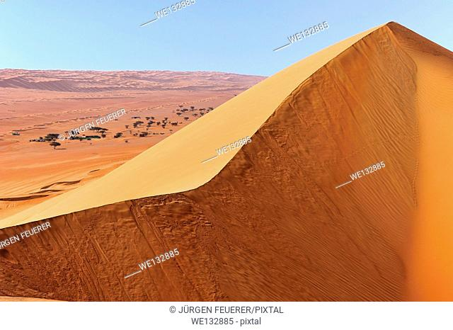 Huge dune and valley in the Rimal Al Wahiba, Wahiba Sands, Sultanate of Oman