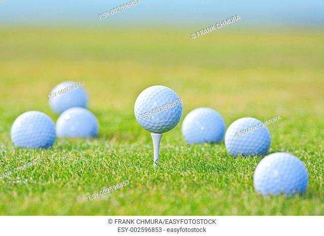 golf ball on tee surrounded by other golf balls out of focus