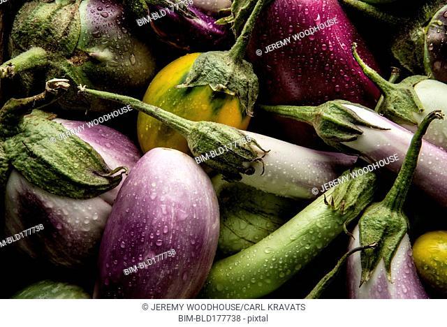 Pile of variety of eggplants