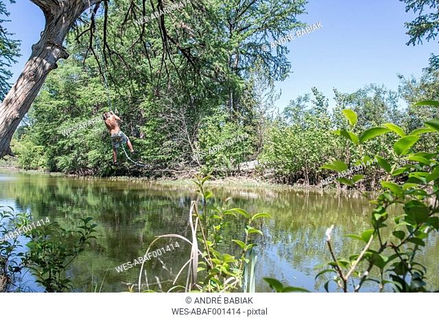 USA, Texas, Boy swinging on a rope to dive into River Frio