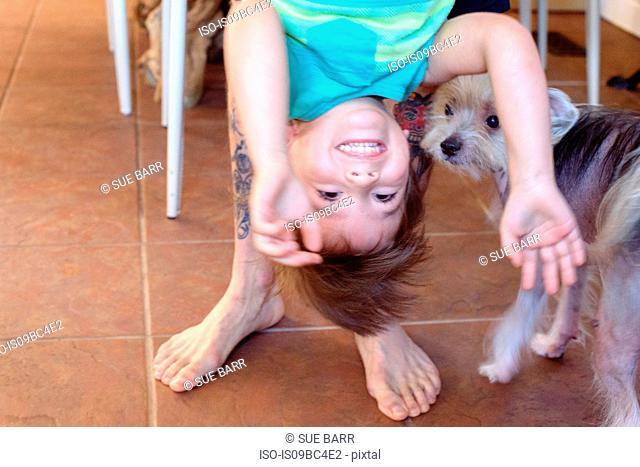 Boy being held upside down, dog looking on