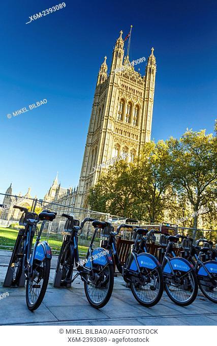 Houses of Parliament. London, England, United kingdom, Europe