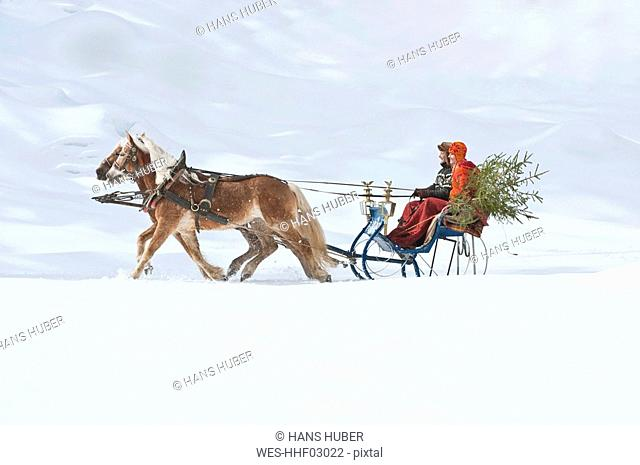 Austria, Salzburger Land, Couple transporting Christmas tree on sleigh, smiling, side view
