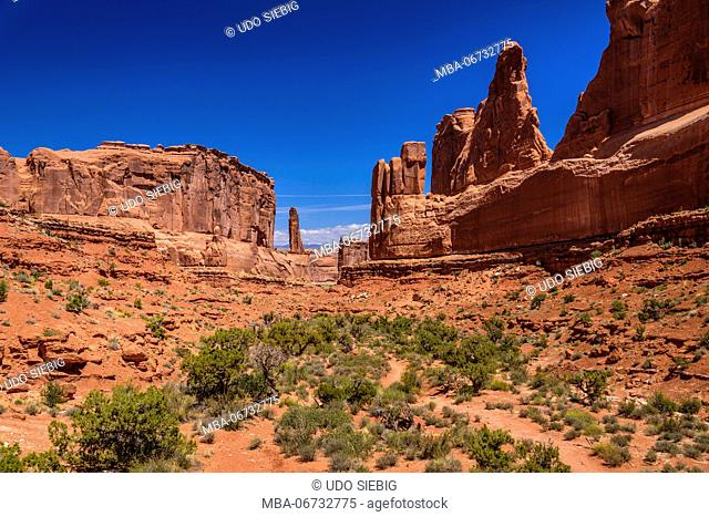 The USA, Utah, Grand county, Moab, Arches National Park, park avenue