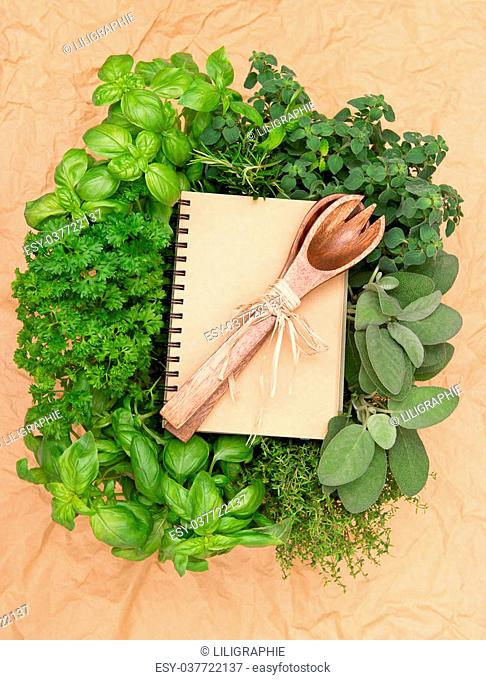 empty recipe book with variety fresh herbs and decoration. cooking background