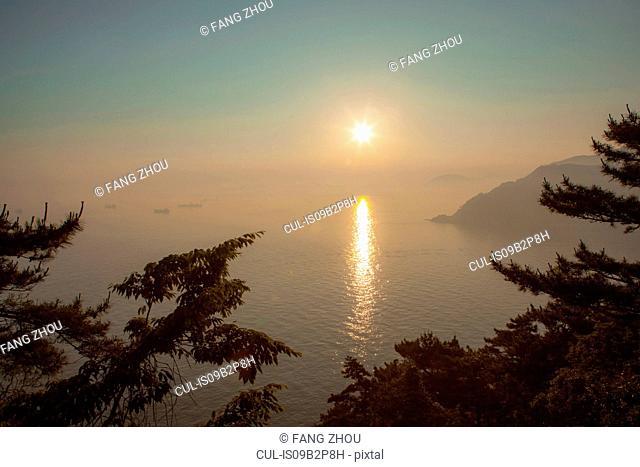 Sunset view on the sea, seen through trees, Busan, Korea