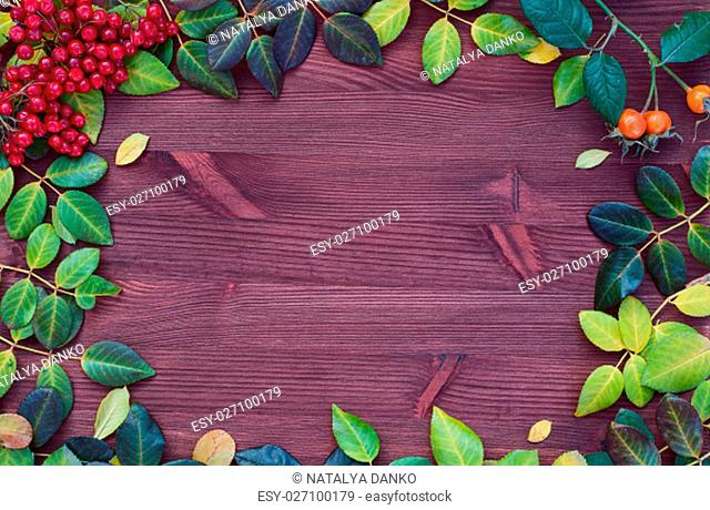 Wooden brown background with leaves and a branch of viburnum, the empty space in the middle