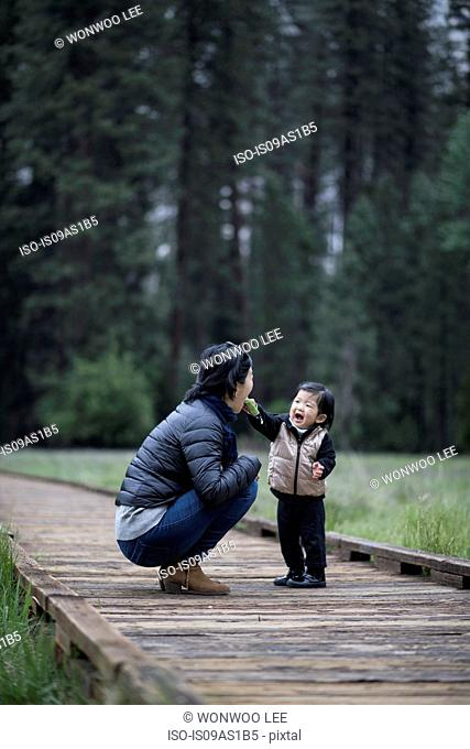 Mid adult woman crouching with toddler daughter on walkway, Yosemite National Park, California, USA