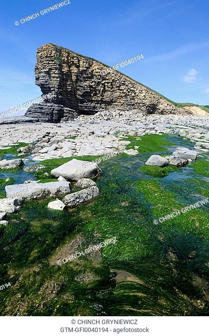 Stream Running Across Rocky Shore on Eroded Coastline