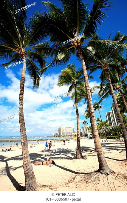 United States, Hawaii, Oahu island, Waikiki beach
