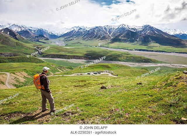 A Senior Male Hiker Stands On The Mountain Side Looking Down At The Eielson Visitor's Center In Denali National Park; Alaska United States Of America