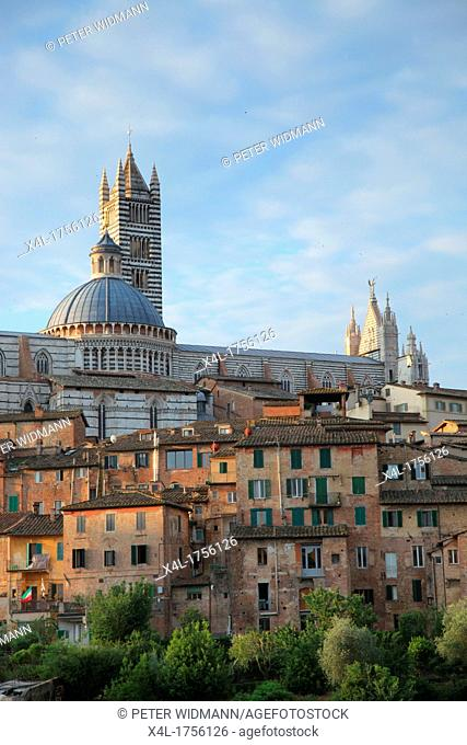 Italy, Tuscany, Siena, city view, Cathedral of Santa Maria Assunta