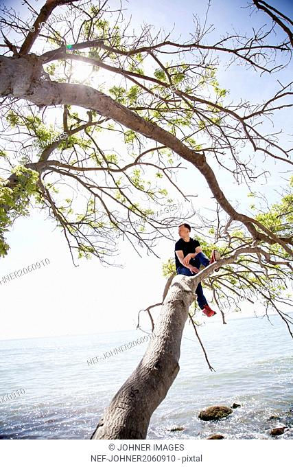 Teenage sitting on branch by sea