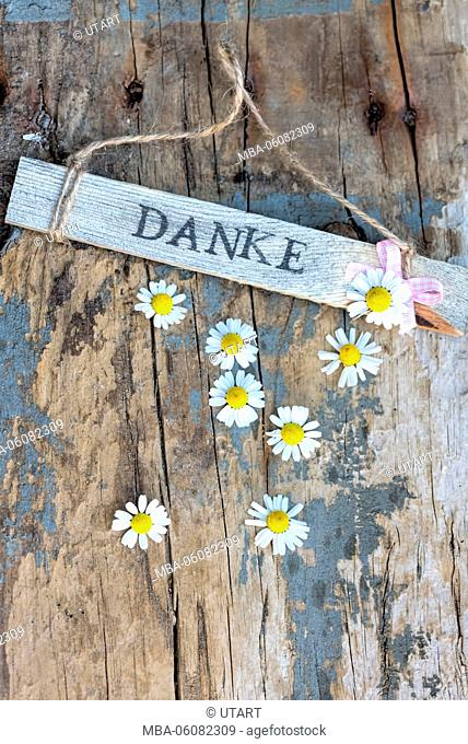Sign with 'Danke' on old wooden board with small camomile blossoms