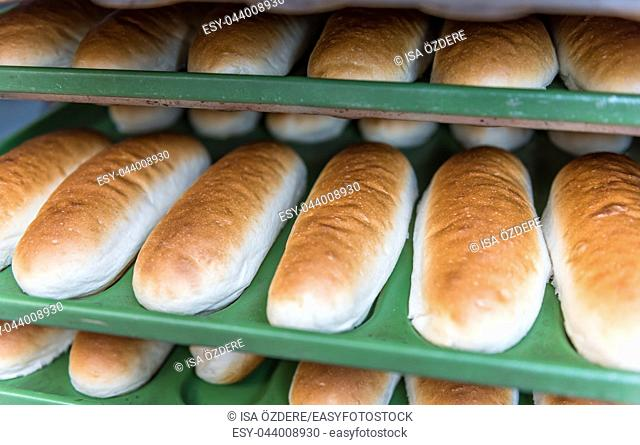 Shelves with fresh baked white wheat bread at bakery display for sale