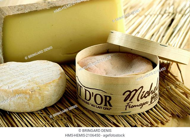 France, Doubs, Saint Point Lac, Michelin cheese dairy, cheeses AOP Mont d Or and Comte, Petit Saint Point