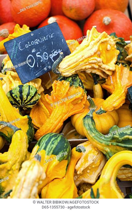 France, Moselle, Lorraine Region, Metz, covered market, squash