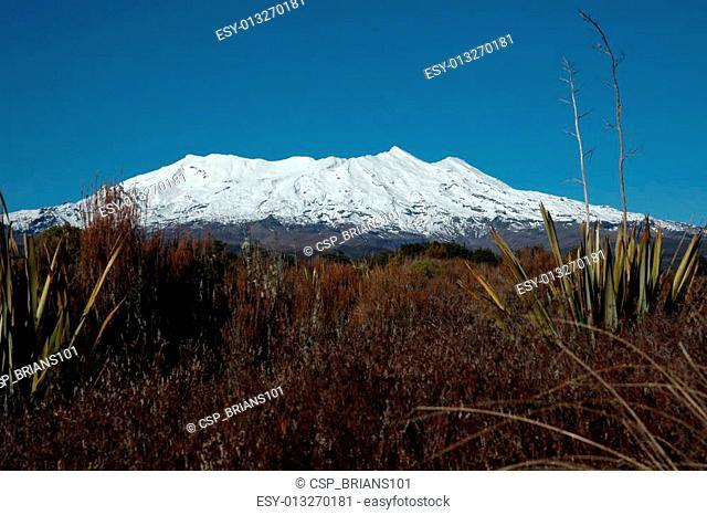 Mount Ruapehu over the alpine plains