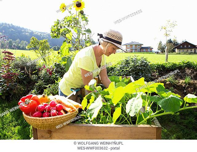 Austria, Mondsee, woman gardening