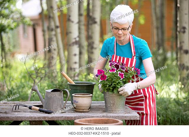 middle-aged woman repotting flowers outdoors
