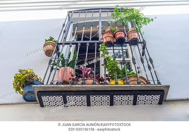 Old town balcony at Badajoz. Full of flowerspots, Spain